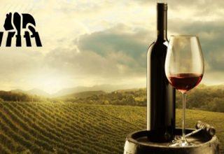 Dudak Uçuklatan Fiyatlarıyla En Pahalı 7 Şarap