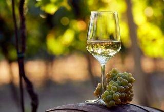En İyi 8 Beyaz Şarap 2021