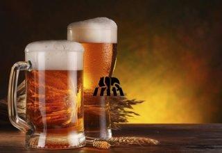Top 10 Best Beer